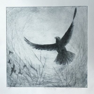 The Black Flag Dry point etching. 25 x 25 cms
